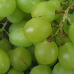 Local Grapes